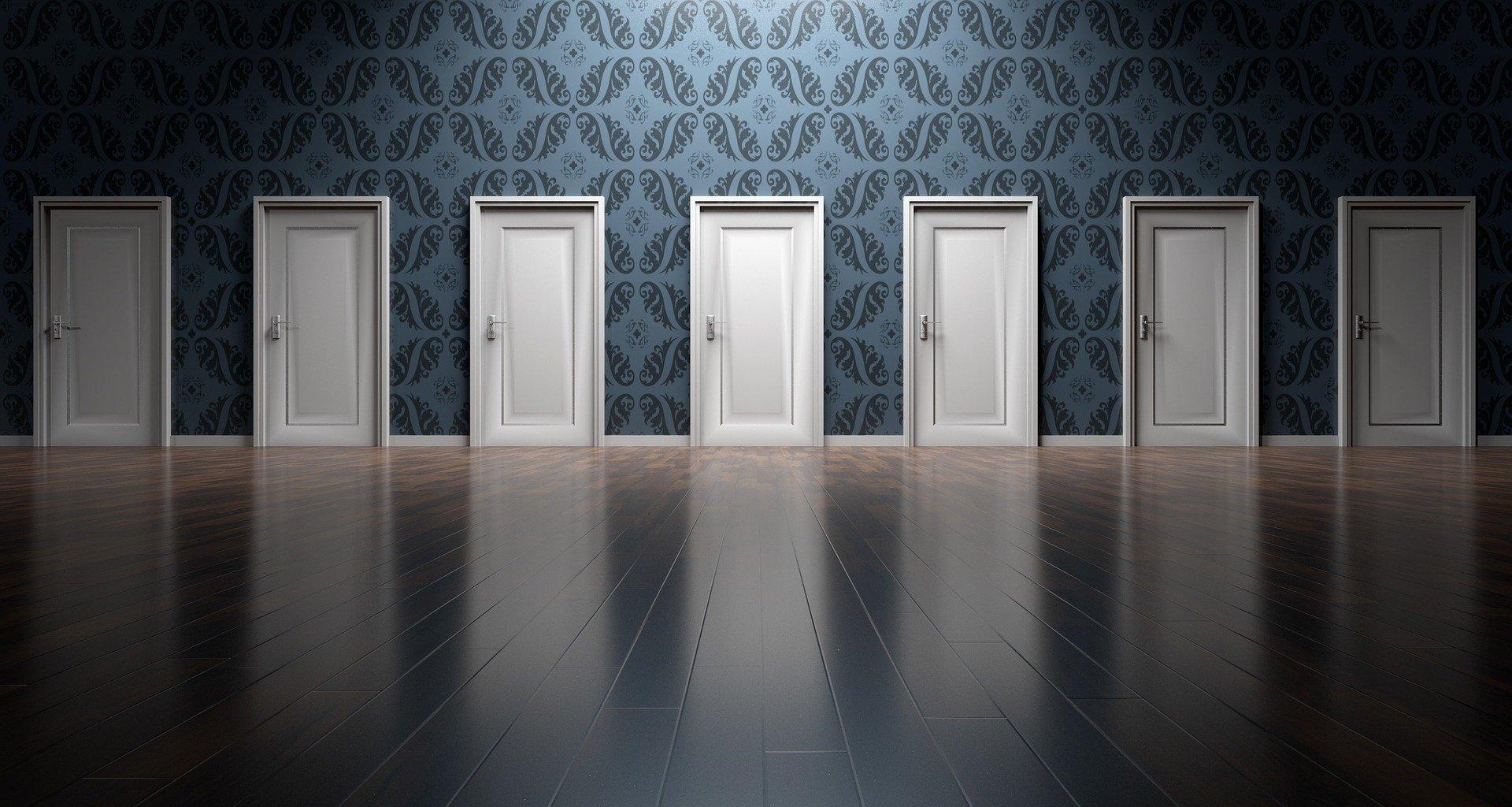 דלתות פנים לבחירה